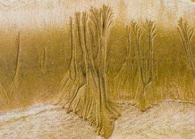 """""""Sandbäume 14"""""""