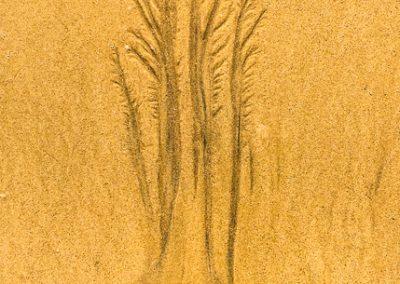 """""""Sandbäume 25"""""""