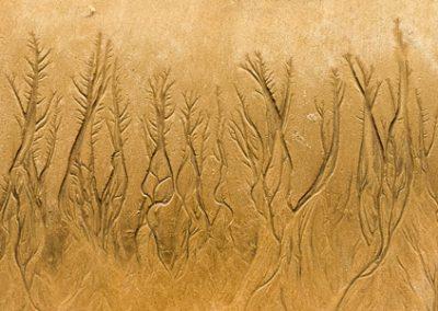 """""""Sandbäume 28"""""""