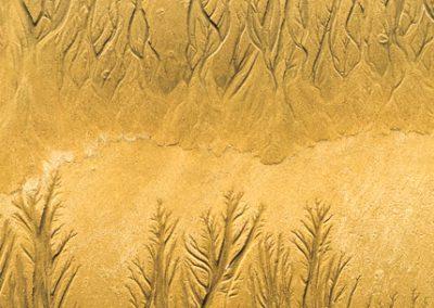 """""""Sandbäume 29"""""""