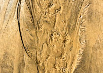 """""""Sandbäume 3"""""""