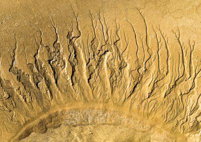 """""""Sandbäume 43"""""""
