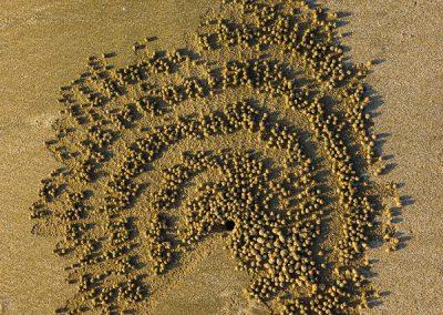 """Sandspiralen 4"""