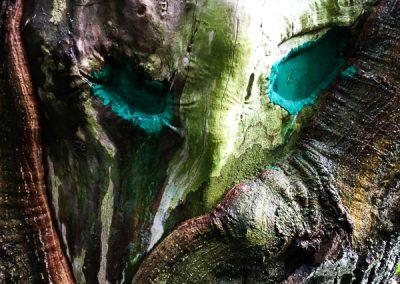 """""""Wald-Maske"""""""